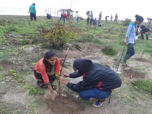 Palghar tree plantation 5